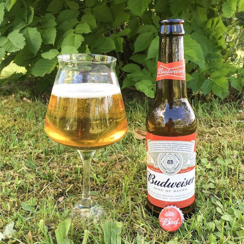 Budweiser är inte kungen av öl och jag dricker hellre vatten.