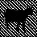 Recept på nötkött.