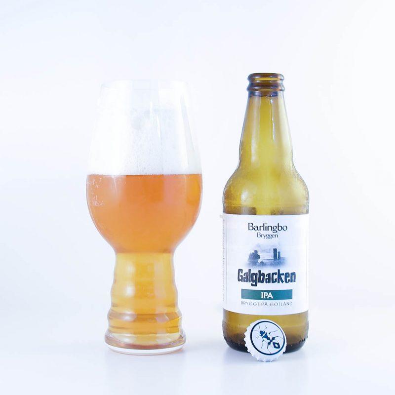 Galgbacken IPA från Barlingbo Bryggeri är en sommaröl om ni frågar mig.